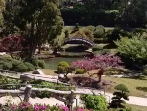 huntington-japanese-gardens