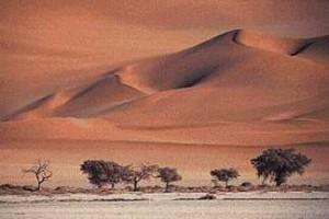 dry_desert