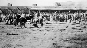 Long-Walk-Navajo-Times-600x335